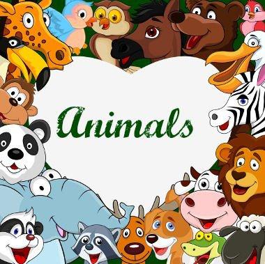 todos-os-animais-em-ingles